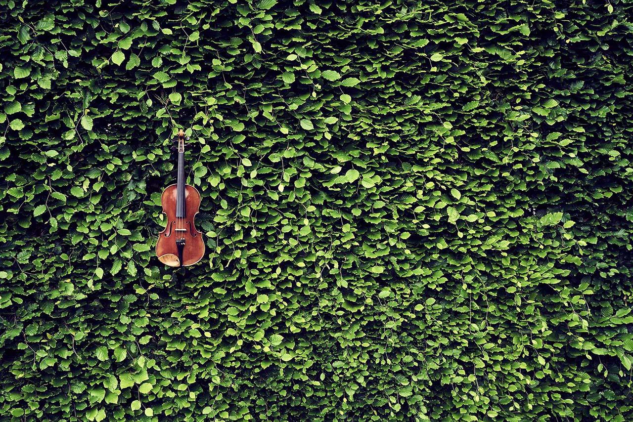 Violine fuer Lomonosov Quartett